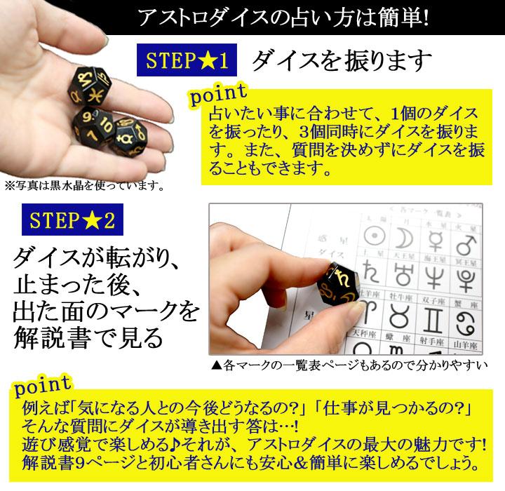 アストロダイス黒水晶のやり方を説明した画像